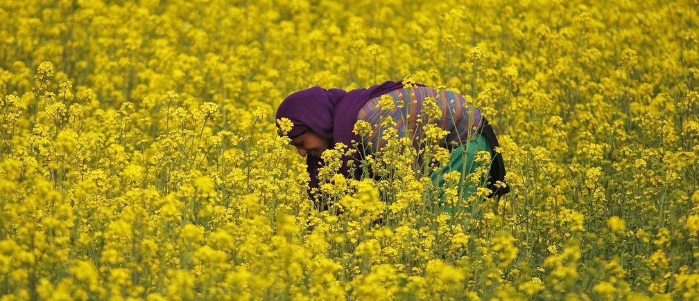 It's time to recognize and empower India's women farmers